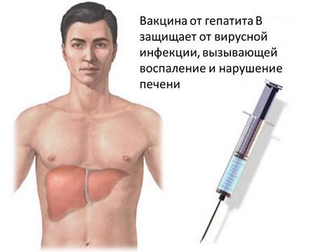 Вакцина от гепатита В
