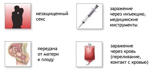 Гепатит С: как передается, пути передачи, как можно заразиться