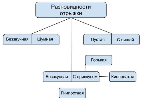 Разновидности отрыжки